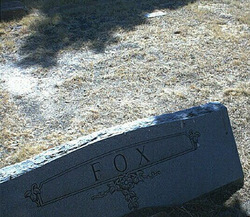 Robert Young Fox