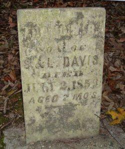 Francis B Davis