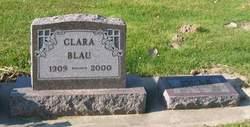 Audrey M Blau