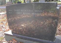 Melbourne Brindle