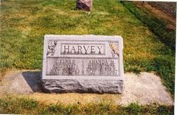 Cyrus Elmer Harvey