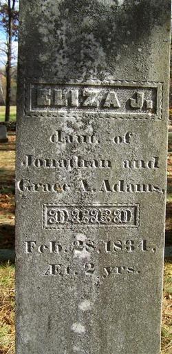 Eliza J Adams