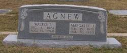 Walter I Agnew