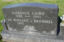Dr Bernard J Brommel