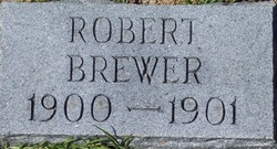 Robert Brewer