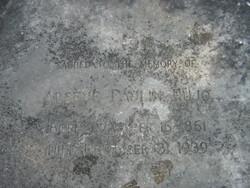 Arsene Paulin Pujo