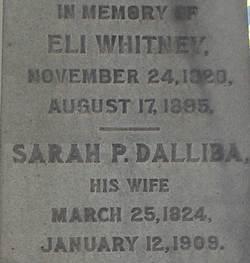 Sarah P <i>Dalliba</i> Whitney