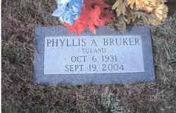 Phyllis Ann <i>Toland</i> Bruker