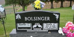 Debra Kay <i>Harbaugh</i> Bolsinger