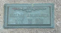 Nellie <i>Davis</i> Bolsinger