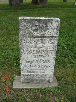 Andrew Jackson Balsinger