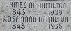 Rosannah Hamilton
