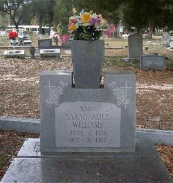Sarah Alice Williams