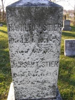 Hamilton W Stier