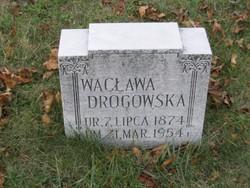 Waclawa Drogowski