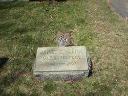 James E Alling