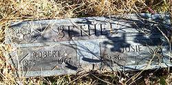 Robert Bethel