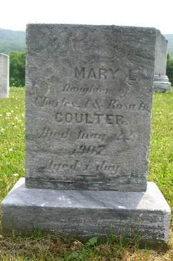 Mary L. Coulter
