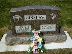 Andrew J Hinshaw