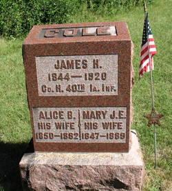 Mary J E Cole