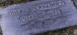 Joe J Fernandez
