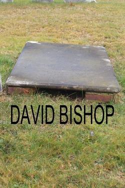 Col David Bishop