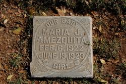 Maria J. Amezquita