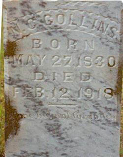 Newton Carroll Collins