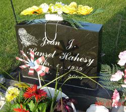 Jean Jeanette <i>Hansel</i> Hahesy