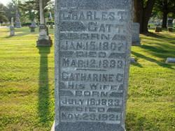 Charles T Catt