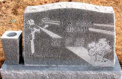 D. W. DESS Binam
