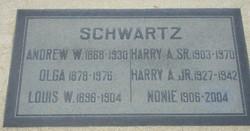 Andrew W Schwartz
