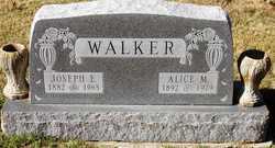 Alice M Walker