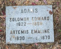 Solomon Edward Adams