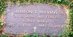 Allison Truman Blevins
