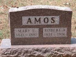 Mary Ellen <i>Casteel</i> Amos