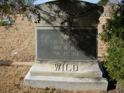 J E Wild