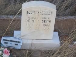 Dora F. <i>Fulgenzi</i> Sena
