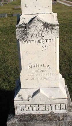 Abel Brotherton