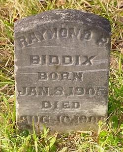 Raymond Ray Biddix