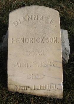Dianna Elizabeth <i>Kelsey</i> Hendrickson