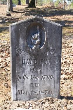 David Fly