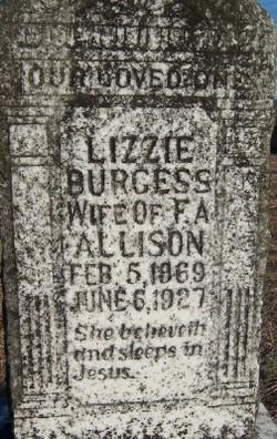 Lizzie <i>Burgess</i> Allison
