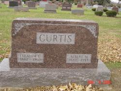 Albert Marion Curtis