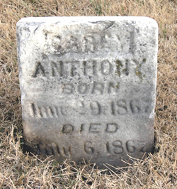 Carey Anthony