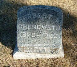 Herbert Leslie Chenoweth