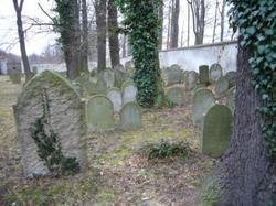 Jewish Cemetery at Hluboka