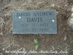 David Andrew Davis