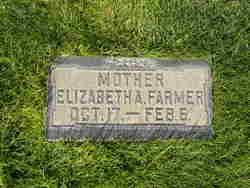 Elizabeth Ann <i>Farmer</i> Butterfield