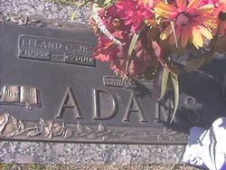 Leland C. Adams, Jr